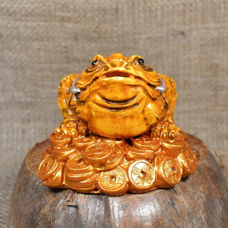 Золотая лягушка